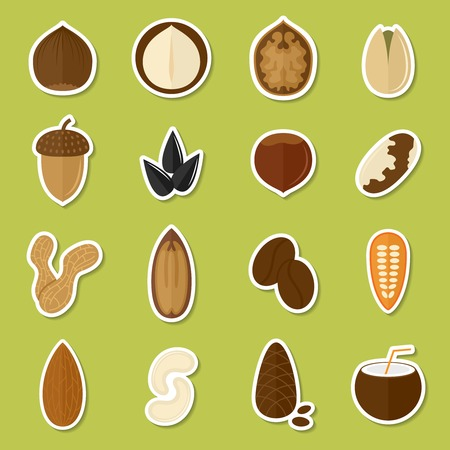 Nuts stickers set with coffee bean coconut cashew isolated vector illustration Vector