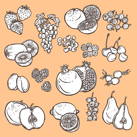 Natural organic fruits and berries black icons set of cherry pomegranate plum isolated vector illustration Vector