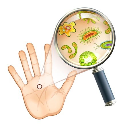 Magnifier and bacteria and virus cells on human palm vector illustration. Vettoriali