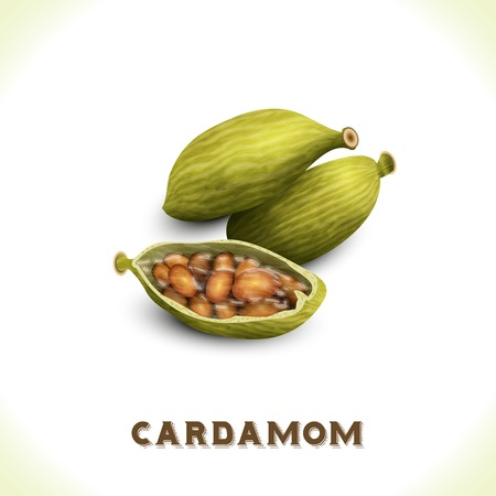 Pile of whole cardamom spice isolated on white background vector illustration