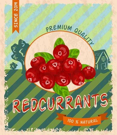 レッドカラント: 自然な新鮮な有機甘い庭レッドカラント プレミアム品質レトロ ポスター ベクトル イラスト