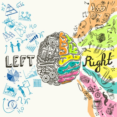 mind set: Brain left analytical and right creative hemispheres sketch concept vector illustration