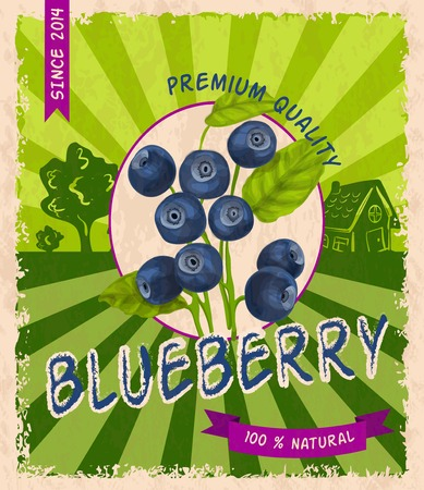 Natural fresh organic sweet forest blueberry premium quality retro poster vector illustration