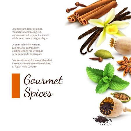 Confectionery gourmet spices food product decorative elements on white background vector illustration