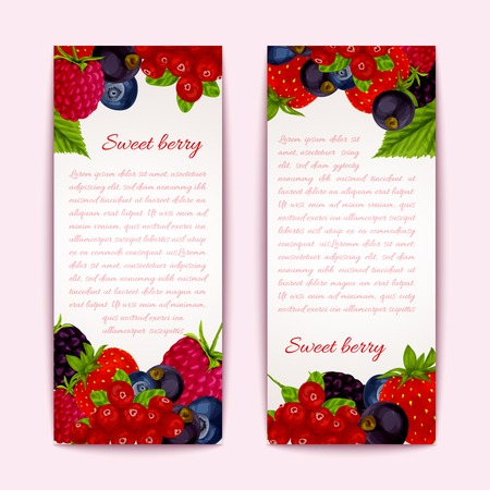 passion ecology: Natural organic forest healthy berries banners vertical set vector illustration Illustration