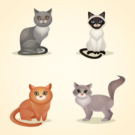 White grey and brown sitting cats set isolated vector illustration
