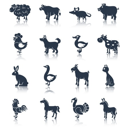 cock duck: Farm animals livestock cattle and pets icons black set isolated vector illustration animals set black