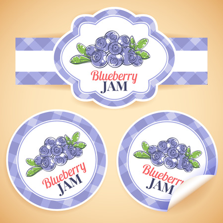 homemade style: Sweet and healthy homemade blueberry jam marmalade paper label set isolated vector illustration Illustration
