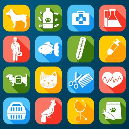 Veterinary pet food and health care  icons set flat isolated illustration Vector