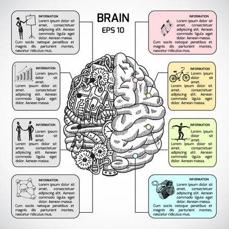 right hand: Brain hemispheres sketch infographic set with intellect and creativity symbols illustration Illustration