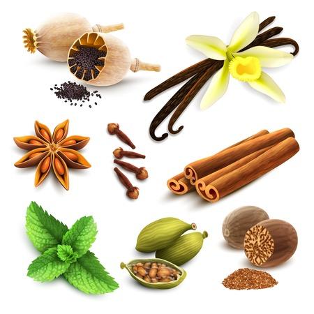 épices: Herbes et épices éléments décoratifs mis de graines de pavot vanille cannelle illustration isolé
