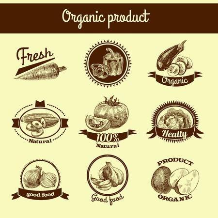 onion slice: Vegetable natural organic fresh food sketch ribbon banner set isolated illustration Illustration
