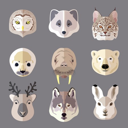Northern animal and bird portrait flat icons set with owl arctic fox lynx isolated illustration.