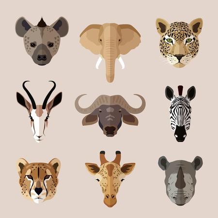 zwierzeta: Portret zwierząt afrykańskich południowe zestaw ikon z płaskich Hiena słoń jaguar ilustracji wektorowych odizolowane