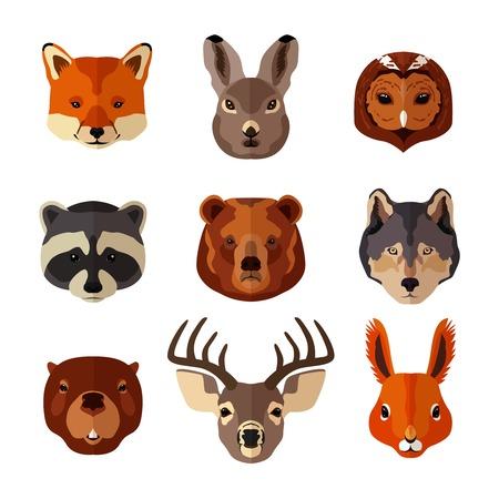 castor: Iconos planos animales retrato Bosque establecen con aislados liebre zorro búho ilustración Vectores