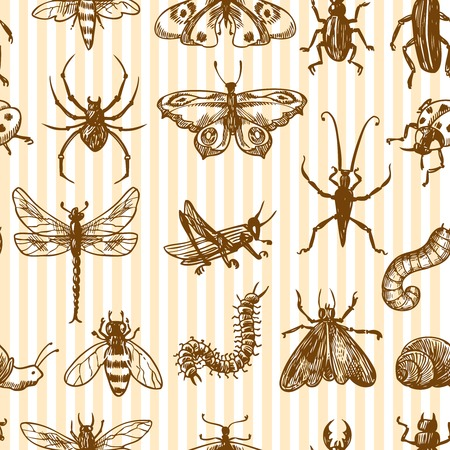 Insects sketch monochrome decorative seamless pattern with snail grasshopper centipede vector illustration Vector