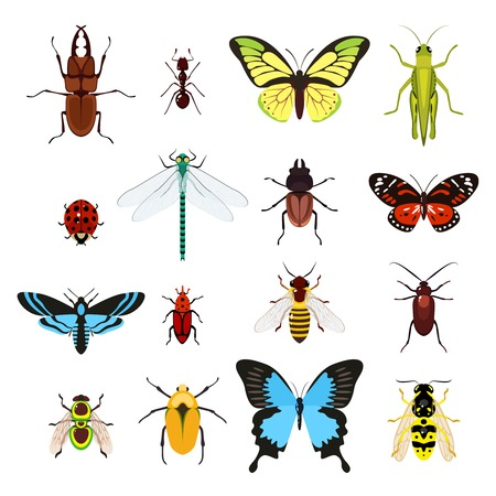 Insects colored decorative icons set with dragonfly beetle butterfly isolated vector illustration Иллюстрация