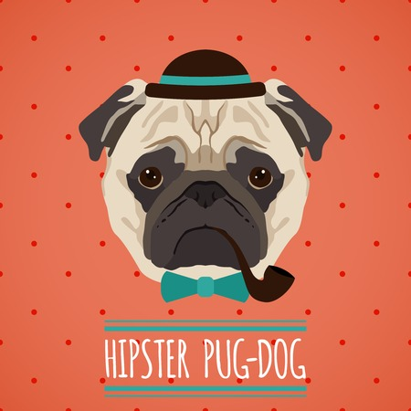pipe smoking: Hipster pug dog with hat smoking pipe and bow tie portrait with ribbon poster vector illustration