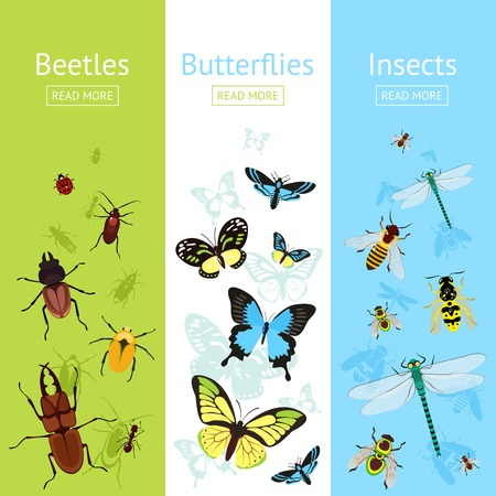 centipede: Insects colored decorative vertical banner flat set with beetles and butterflies isolated vector illustration