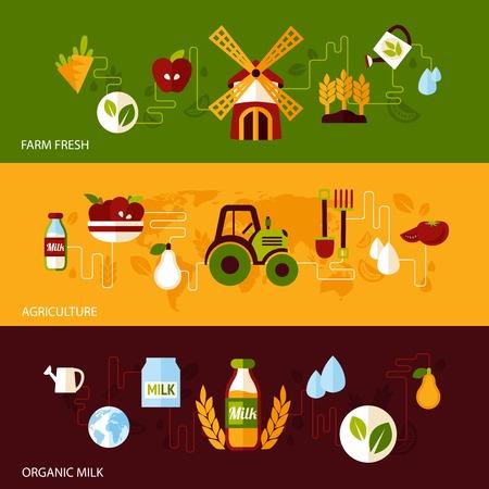 agricultura: Agr�colas frescos productos org�nicos naturales de alimentos y la bandera plana leche conjunto aislado ilustraci�n vectorial