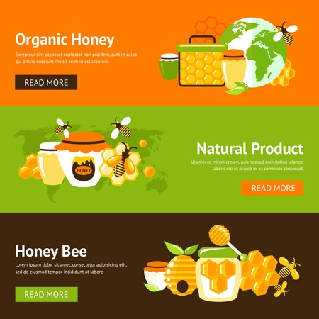 Honey organic natural product drop comb bee hive and cell food agriculture flat banner set isolated vector illustration Vector