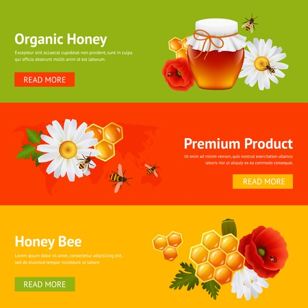 Honey natural organic product food decorative banners set with daisy bumblebee honeycomb isolated vector illustration Vector