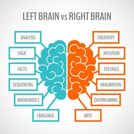 Brain left analytical and right creative hemispheres infographics set vector illustration Illustration