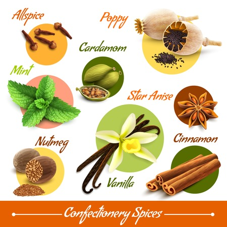 anise: Spices decorative icons set of poppy cardamom nutmeg vanilla isolated vector illustration