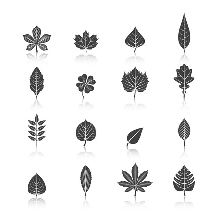 botanic: Botanic plants eco black icons set with marijuana cannabis trefoil trees leaves silhouette abstract isolated vector illustration