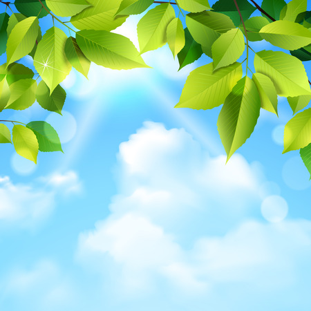 Green leaves tree foliage and blue sky clouds outdoor realistic background vector illustration
