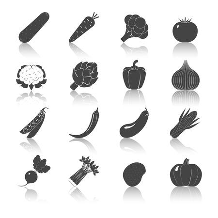 poivre noir: L�gumes ic�nes noir serti de poivre radis pommes de terre oignons de ma�s isol� illustration vectorielle Illustration