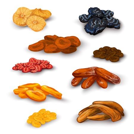 Zon gedroogd fruit gezonde voedingswaarde voedsel pictogrammen set met abrikozen rozijnen pruimen vijgen abstract geïsoleerde vector illustratie