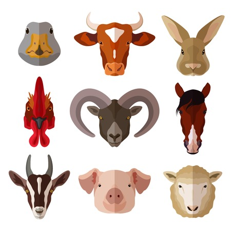 country farm: Pet portrait flat icon set with cow goose pig goat isolated vector illustration
