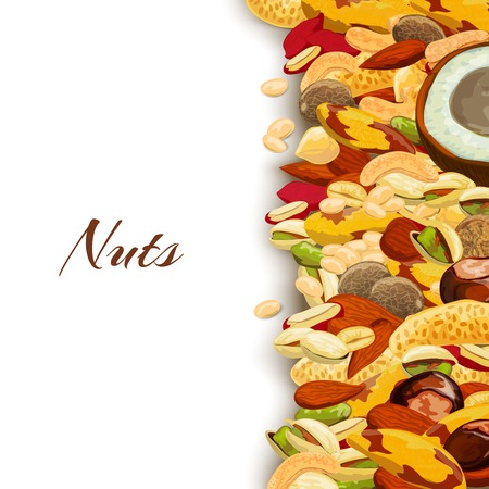 natural health: Nuts mix with peanut hazelnut pistachio coconut background vector illustration Illustration