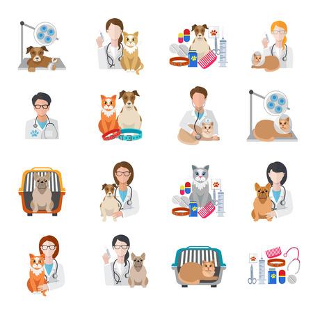 Veterinary pet medical kit vet doctor icon flat set isolated vector illustration