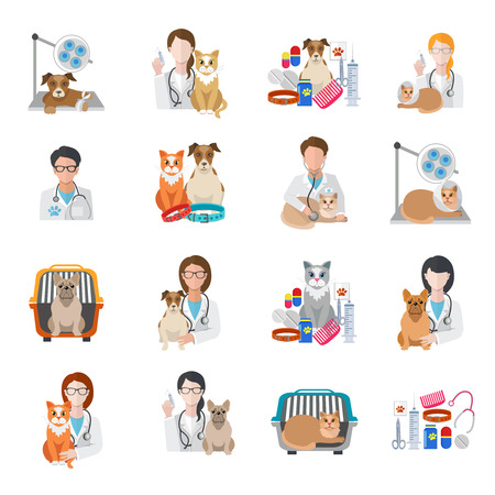 Veterinary pet medical kit vet doctor icon flat set isolated vector illustration