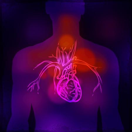 radiography: Medical background with human torso heart x-ray radiography photo vector illustration