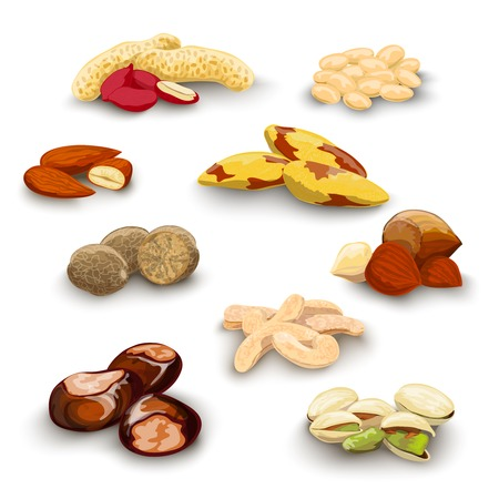 brazil nut: Nuts decorative icons set with peanut almond chestnut pistachio isolated vector illustration