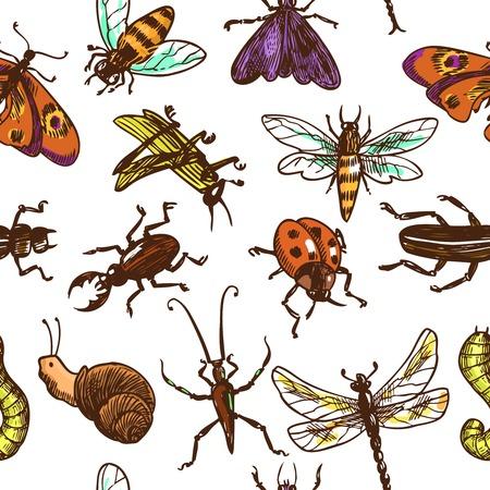 昆虫スケッチ バグ蝶トンボ ベクトル イラストの色の装飾的なシームレスなパターン
