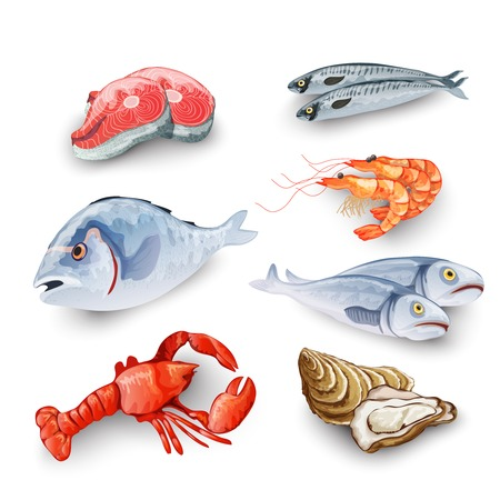 shrimp: Seafood products set with salmon steak shrimp prawns fish crab isolated vector illustration