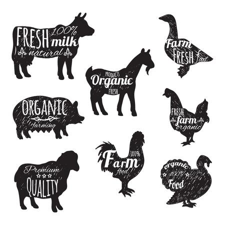 animales de granja: Animales de granja Iconos decorativos pizarra con aislados ganso ovejas vaca ilustración vectorial Vectores
