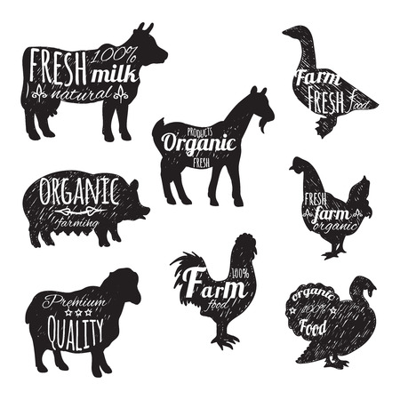 animal breeding: Farm animals set chalkboard decorative icons with cow sheep goose isolated vector illustration