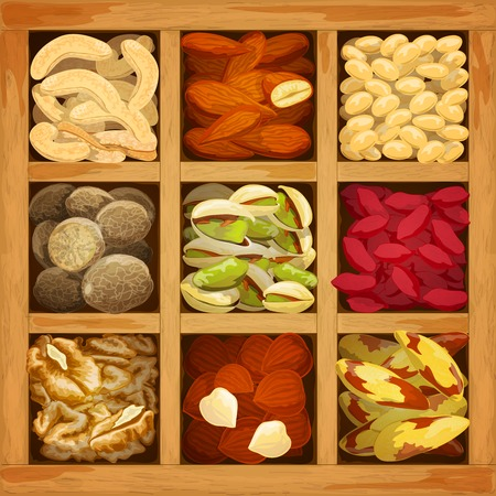 nutmeg: Nuts assorted collection of nutmeg walnut brazil almond in wood box vector illustration