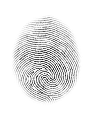 identidad personal: La identidad personal de huellas dactilares y el s�mbolo insignia aislada en el fondo blanco ilustraci�n vectorial Vectores