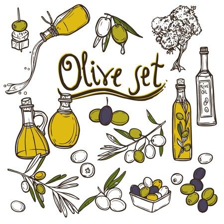 foglie ulivo: Olive schizzo icone decorative impostate con un ramo di albero e bottiglia di olio illustrazione vettoriale isolato Vettoriali