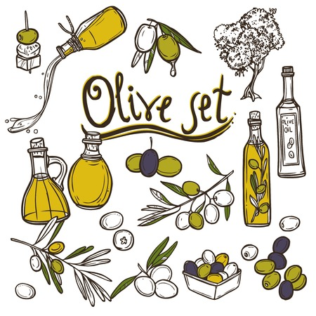 olive oil bottle: Olive sketch decorative icons set with tree branch and oil bottle isolated vector illustration