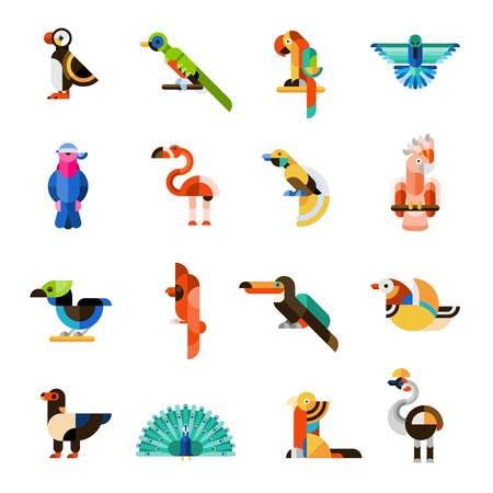 pheasant: Colored jungle wild forest exotic birds icons set isolated vector illustration