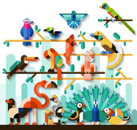jungle jumping: Jungle birds rainforest wildlife concept with tropic animals set vector illustration Illustration