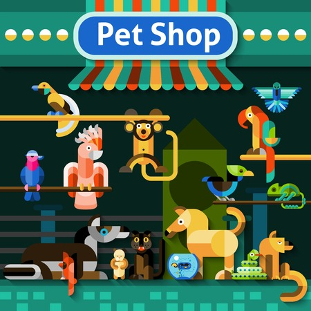 cat fish: Pet shop background with pets domestic birds snake and iguana vector illustration