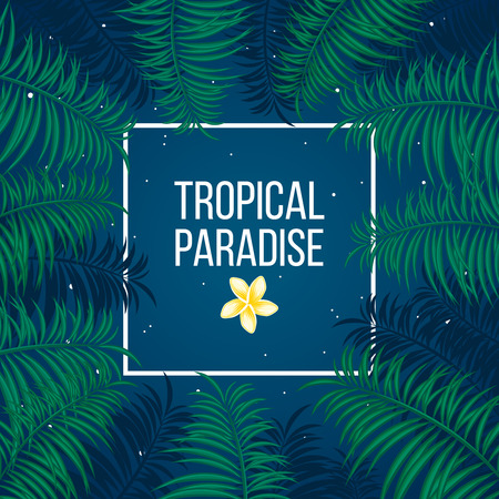 Tropical summer night under sky full of stars and palm leaves background template vector illustration. Vector